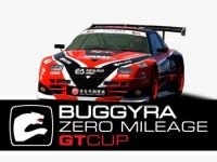 Buggyra Zero Mileage GT Cup.jpeg